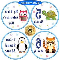 "25 Pack of 4"" Baby Monthly Stickers with Milestone & Holiday"