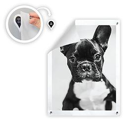 GoodHangups - Damage-Free Magnetic Poster & Picture Hangers