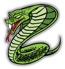 Angry Snake Animal Car Bumper Sticker Decal  - 3'' or 5''
