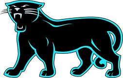 Carolina Panthers NFL Football Sport Art Decor Vinyl Sticker