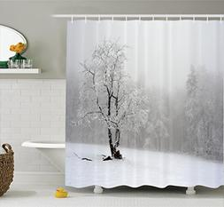 Farm House Decor Shower Curtain Set by Ambesonne, Winter Lan