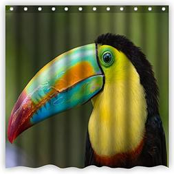 Atwtow Gorgeous Toucan Bird Colorful Feathers Big Mouth Funn