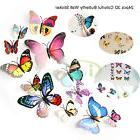 24PCS 3D Colorful DIY Butterfly Stickers Wall Stickers Craft