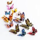 DaGou 12 PCS 3D Luminous Butterfly Wall Stickers Decor Art D