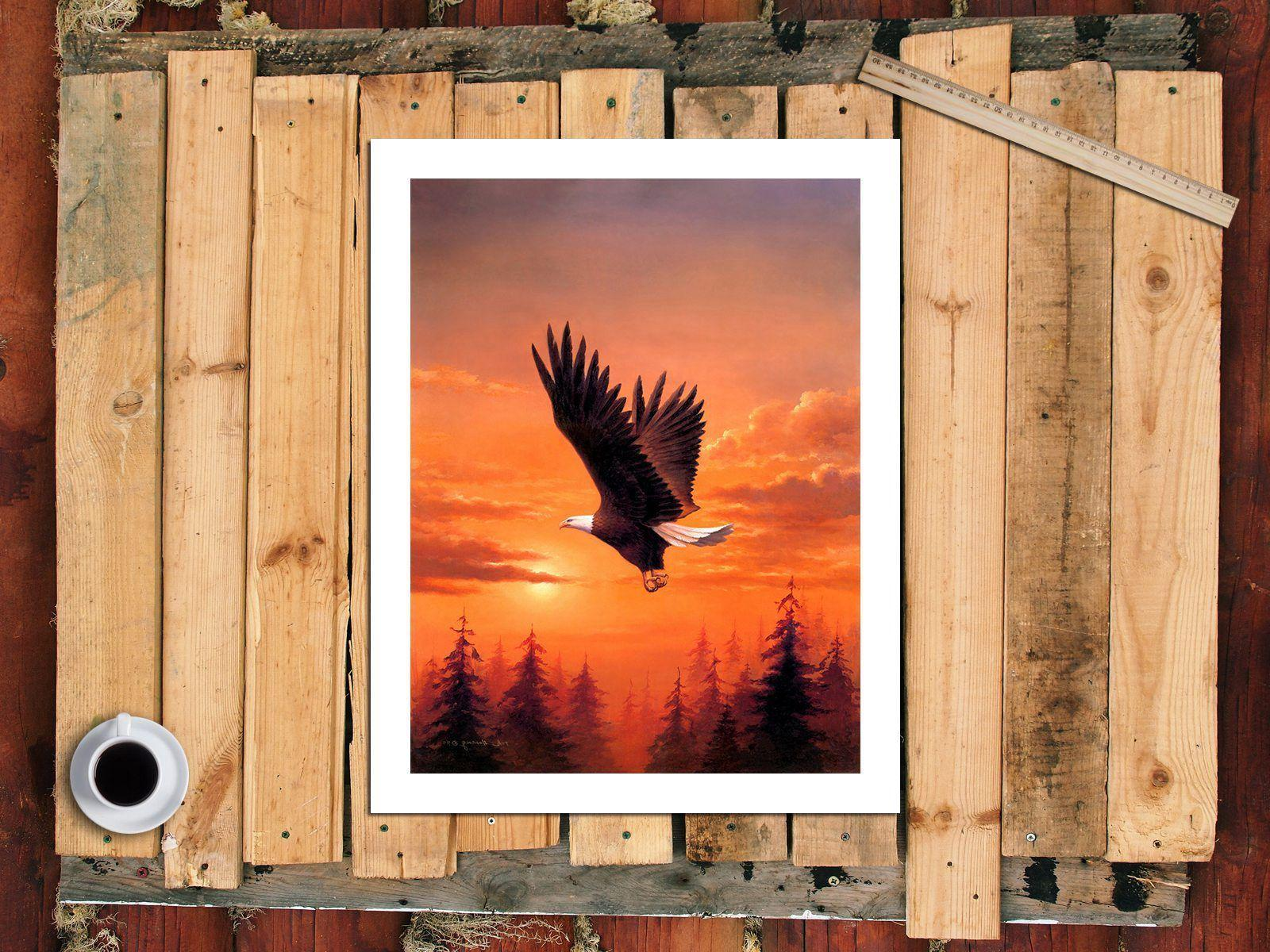 A0441 Bald Eagle Home HD Print Picture Painting