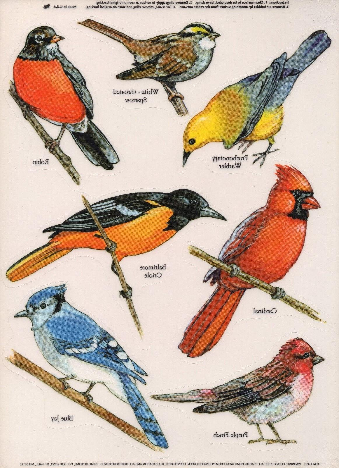 Bird Window Decals / Stickers / Clings in Color! NEW! Great