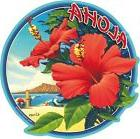 Car Window Bumper Sticker - Hawaiian Art Decal - Hibiscus by