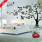 Family Tree Wall Decal Mural Sticker DIY Art Removable Vinyl