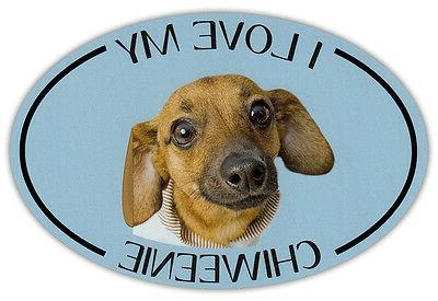 oval dog breed picture car magnet i