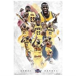 Poster - Cleveland Cavaliers - L James 15 New Wall Art 22x34