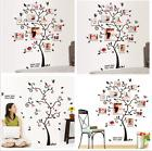 USA Family Tree Wall Decal Sticker Large Vinyl Photo Picture