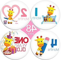 "LIMITED PROMO 48 Pack of 4"" Premium Baby Monthly Stickers By"