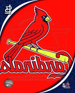 St Louis Cardinals - Official Team Logo - MLB 8x10 Photo