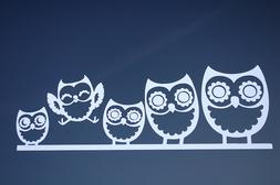 Owl Family Sticker Vinyl Decal CHOOSE COLOR!! Car Window Wal