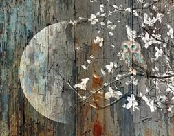 Rustic Owl On Tree Branch Moon Brown Blue Wall Art Home Deco