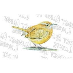 SC State Bird Carolina Wren Vinyl Stickers and Decals for Wi