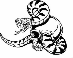 Snake Skull Serpent Car Truck Window Laptop Vinyl Decal Stic