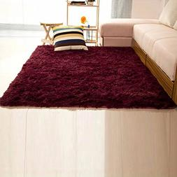 DODOING Super Soft Indoor Modern Shag Area Silky Smooth Rugs